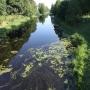 Kanał Augustowski - Śluza Sosnowo, widok ze Śluzy na Kanał
