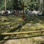 Kwatera pierwszowojenna na cmentarzu rzymsko-katolickim przy zabytkowej kaplicy