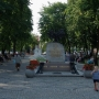 W letnie gorące dni zacieniony park na Rynku Zygmunta Augusta jest idealnym miejscem na odpoczynek.