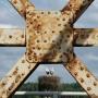 Co roku sąsiadujące z mostem gniazdo zamieszkuje bociania rodzina. Rozlewiska Narwi to doskonałe miejsce dla tych żabojadów.