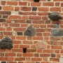 Ceglany mur wzmacniano kamieniami co oprócz konstrukcyjnych zalet dodawało uroku jednolitej strukturze budowli.