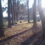 Michałowo - Alejka na cmentarzu.