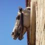 Piekny profil konia na ścianie stajni.