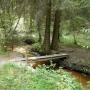 Kładka położona w lesie pozwoli nam suchą stopą przejść przez strumień.