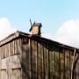 Terlików - Wiatraczek zbudowany przez Jana Lipińskiego jako wskaźnik kierunku i siły wiejącego wiatru.