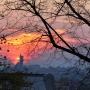 Widok ze wzgórza św. Rocha na zachodzące słońce za kościół św. Jadwigi Królowej.