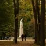 Park Konstytucji 3 Maja (Zwierzyniec)