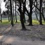 Park Centralny