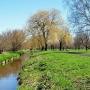 Park Antoniuk wczesną wiosną, w okolicy rzeki Białej.
