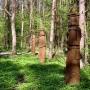 Rezerwat 'Surażkowo'. Galeria leśna Powstania Styczniowego 1863r.