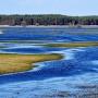 Wiosenne rozlewiska rzeki Narew (kwiecień- widok z wieży).