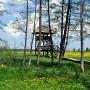 Wieża widokowa wśród ukwieconych łąk powstałych na rozlewiskach rzeki Narwi.
