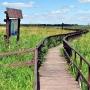 Ścieżka przyrodnicza 'Kładka wśród bagien'