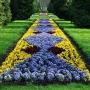Jak co roku na wiosnę park ożywa kolorowymi dywanami z bratków.