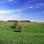 Widok ze wzgórza zamkowego na okoliczne łąki.