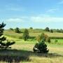 Średniowieczne grodzisko ze wszystkich stron otacza pole kukurydzy i trzeba czekać do jej ścięcia aby wejść na wzgórze.