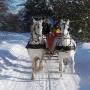 Ritowisko również zimą tętni życiem (rytmem końskich kopyt).